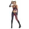 Batman Arkham City Secret Wishes Harley Quinn Adult Costume